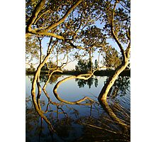 Mirrored Curves Photographic Print