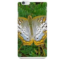 Peacock butterfly- Everglades iPhone Case/Skin