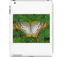 Peacock butterfly- Everglades iPad Case/Skin