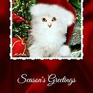 Mistletoe, The Silver Shaded Chinchilla Christmas Card by Morag Bates