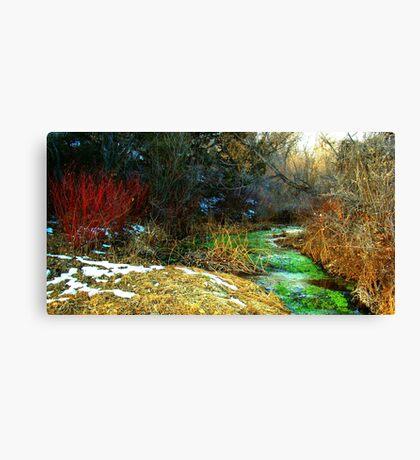 TechniCOLORED NATURE  Canvas Print