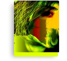 Distorted Perfection  Canvas Print