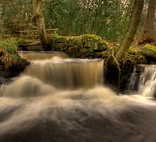 Rivelin Falls by Dave Warren