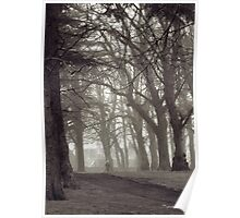 Trees at Grant Park, Forres Poster