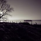 Lochindorb in Winter by Tez Watson