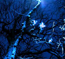 Blue Tree by Tessi