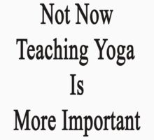 Not Now Teaching Yoga Is More Important  by supernova23