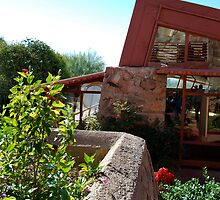 Taliesin West I - Winter home of Frank Lloyd Wright by gooseberry