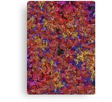 Visual Psychedelia Series 03 Canvas Print