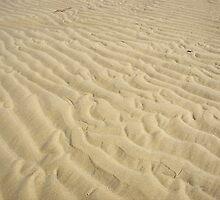 Sandbar by buddykfa