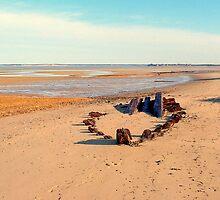 Shipwreck on the Beach by buddykfa