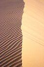 Dune by Travis Easton