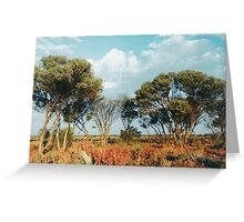 Outback trees Greeting Card