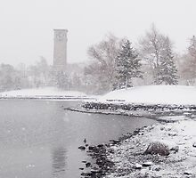 Dingle Tower Snow Day by pturner