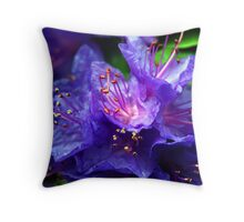 Tulip Festival Two Throw Pillow