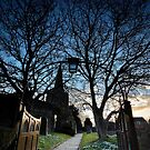 The Gate Into The Night by Andy Freer