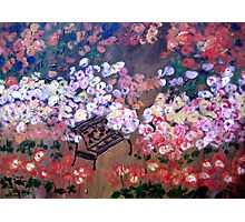 Our Rose Garden Photographic Print