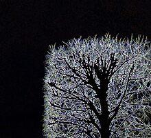 arbre français by justlinda