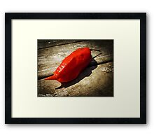 Rustic Ghost Chili Framed Print