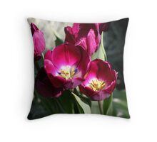 Longwood Throw Pillow