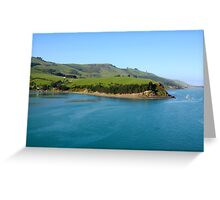 New Zealand, South Island, Otago Peninsula  Greeting Card