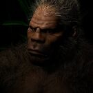 Sasquatch in the night by Michael Beers