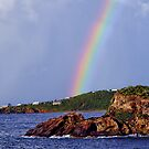 Rainbow by Mike Pesseackey (crimsontideguy)