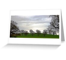 Capesthorne Trees Greeting Card