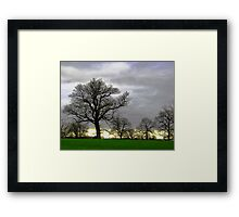 Simple Trees Framed Print