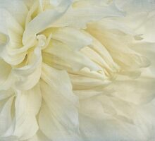 With a Silken Poise by Marilyn Cornwell