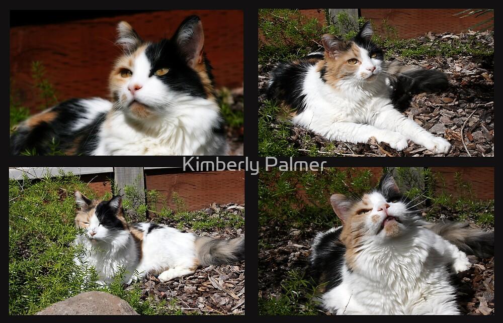 Tribute to Misty by Kimberly Palmer