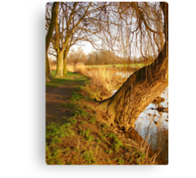 Under The Willow Canvas Print