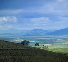 Plains in Bolivia by Phillip  McCordall