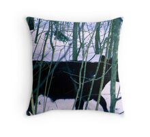 Got Away Throw Pillow