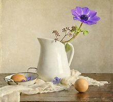 Morning Anemone by Colleen Farrell