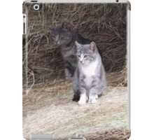 Gray Cat and KIttens on Farm Hay Photograph iPad Case/Skin