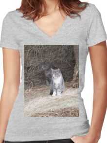 Gray Cat and KIttens on Farm Hay Photograph Women's Fitted V-Neck T-Shirt