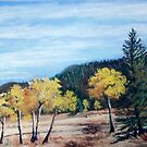 Fall in the Rockies by Carolyn Bishop