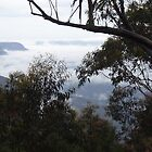 Misty Mountain Top by LucyLizard