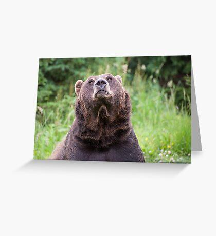 Keep Looking Up Greeting Card