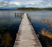 The Jetty by Peter Harrison