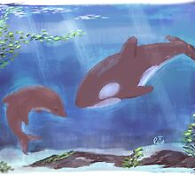The Dolphin and the Whale by RSinQ