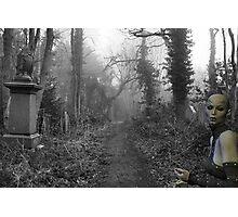Something Wicked - Rose & RedTempa Photographic Print