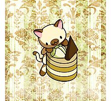 Canelle Apple Kitty Photographic Print