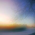 Foggy Sunrise by Imi Koetz