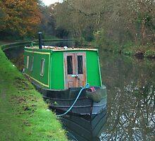 Green vintage canal boat by InterestingImag