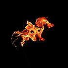 Flaming Seahorse  by buddykfa