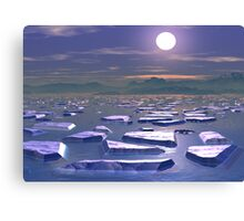 Sea Ice Canvas Print