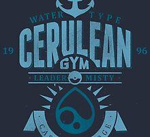 Cerulean Gym by Azafran