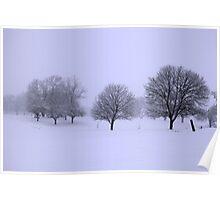 Bare Winter Poster